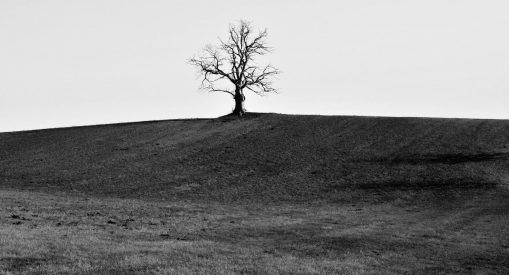 Pattog a zománc – Jáger Viktor fotókiállítása